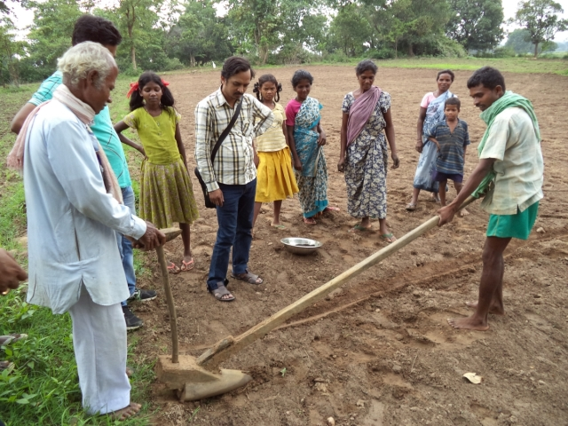 Indranath Singh seen here at a black gram line sowing - Copy