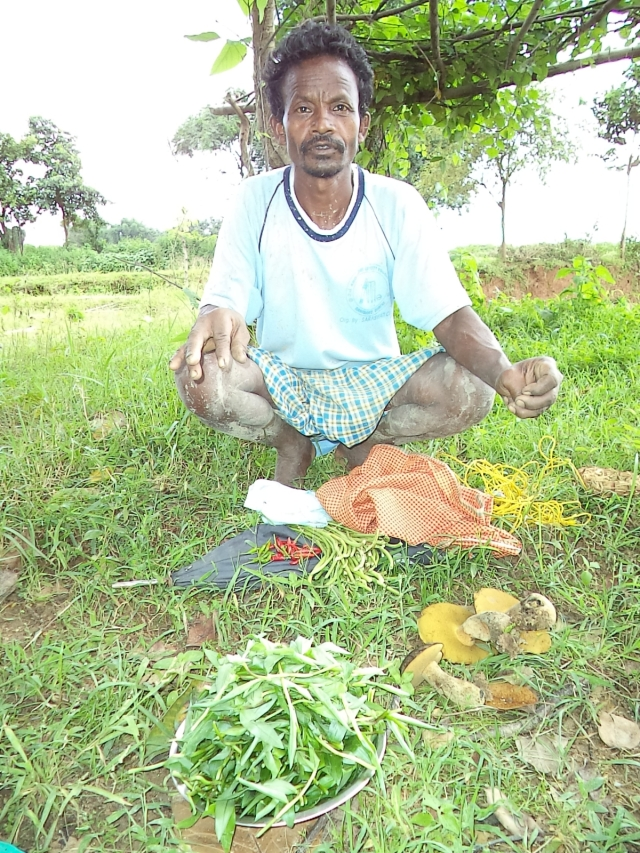 Wild vegetables from Balo village- Copy
